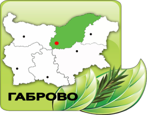 ДГС Габрово